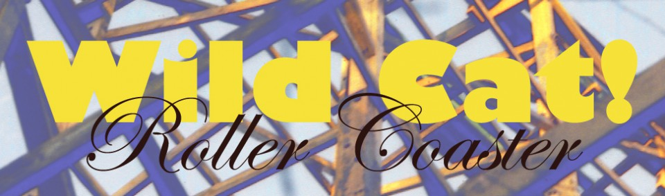 WildCat RollerCoaster